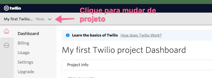 navegar-pelos-projetos-twilio